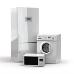 Braselton appliance services